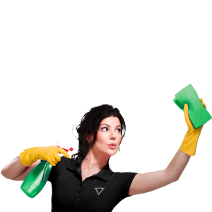 CLEANING-LADY2
